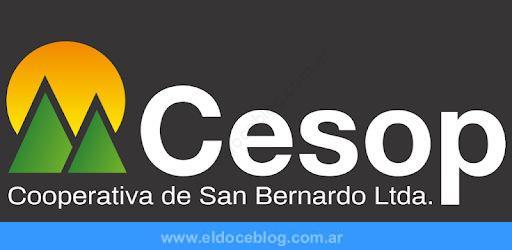 Estado de Cuenta Cesop: cómo Consultarlo, Pagarlo