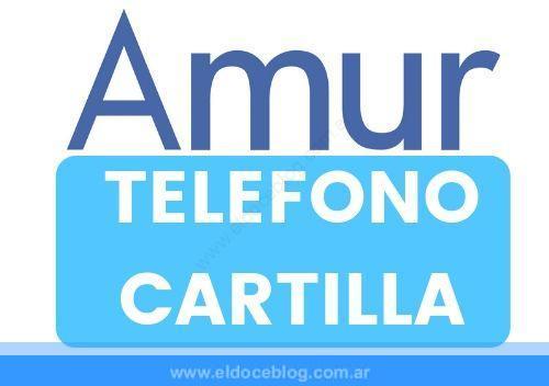 Amur Medicina Prepaga Telefono, Planes, Cartilla, Sucursales, Opiniones