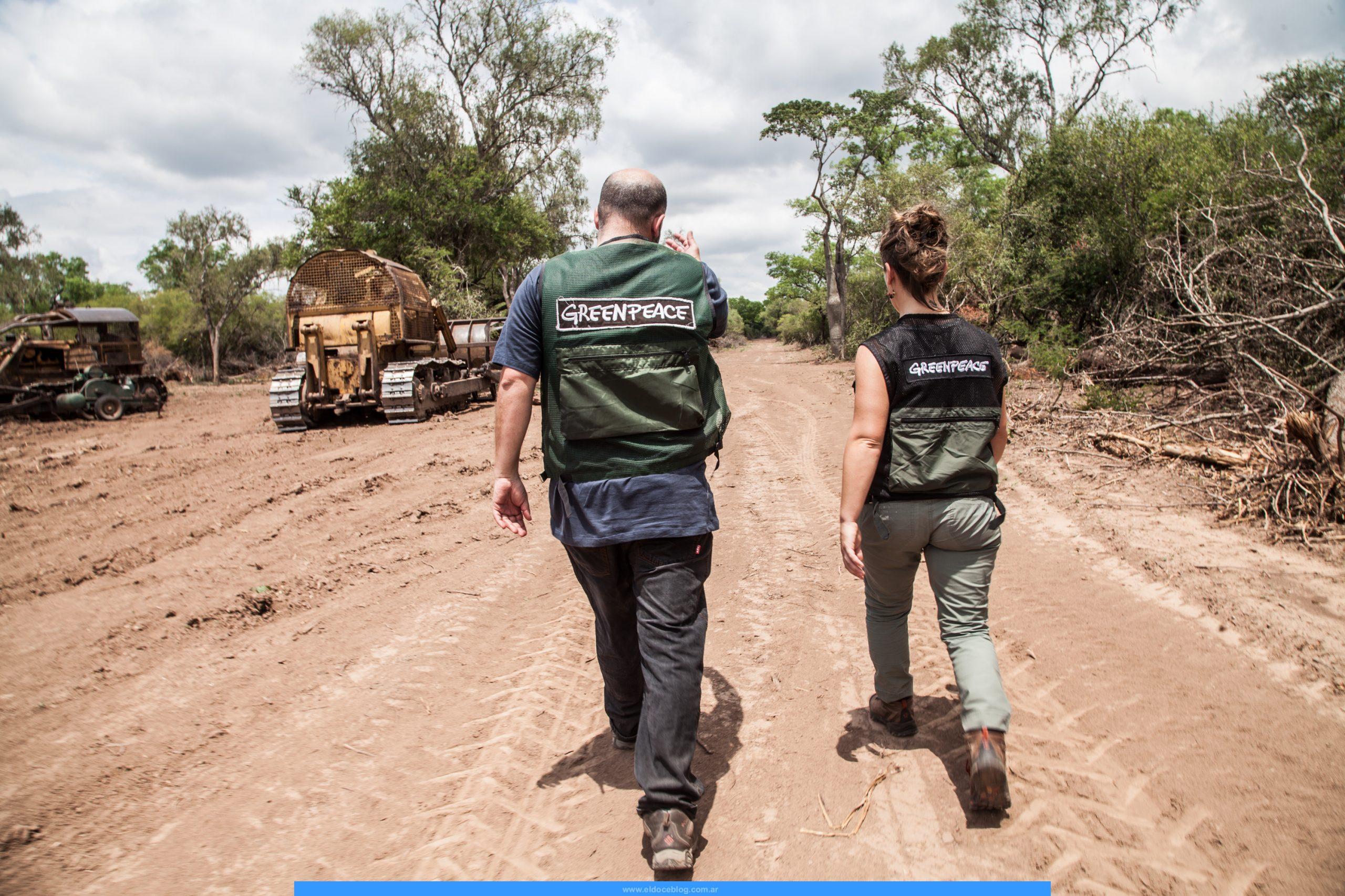Como Dar de Baja Aporte a Greenpeace Argentina