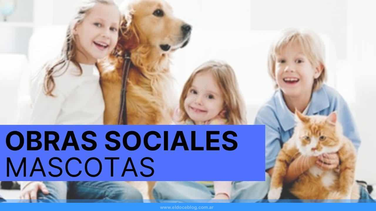 Las Mejores Obras Sociales para Mascotas: OPINIONES y Consejos